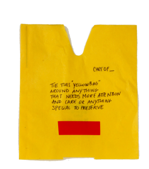 valeria codara yellow bag for care of